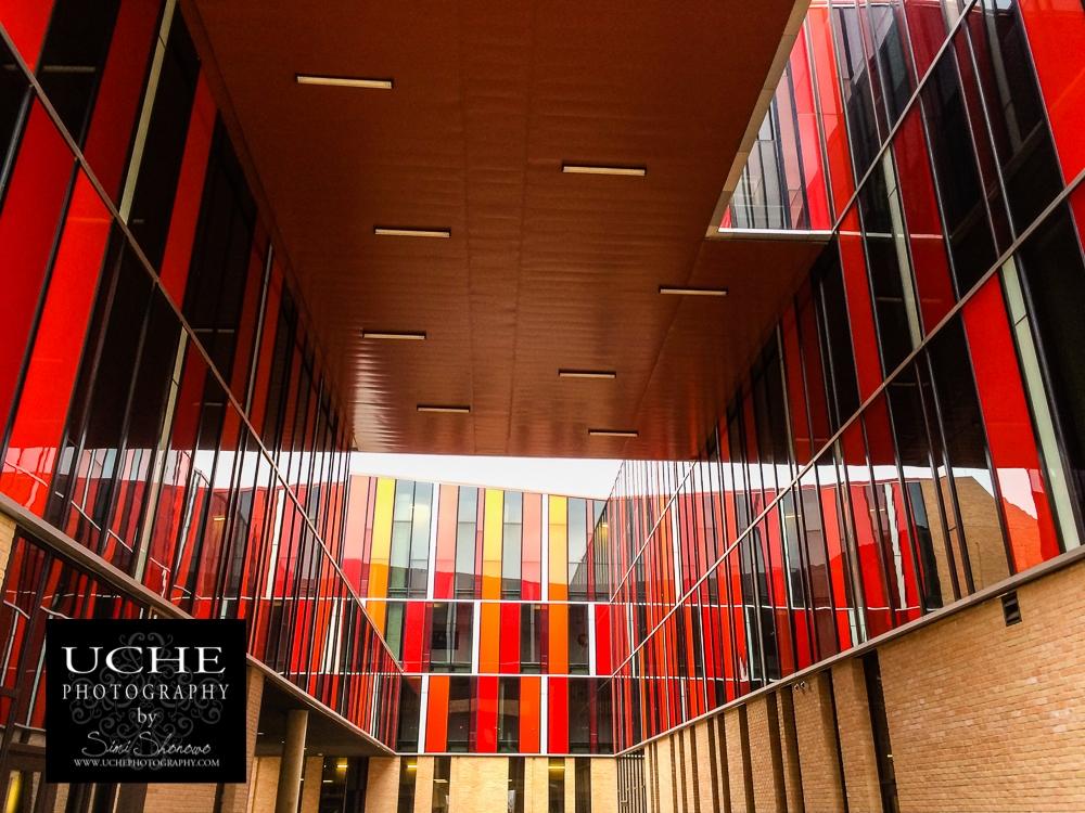 20150221.stripes in the alcove.jpg