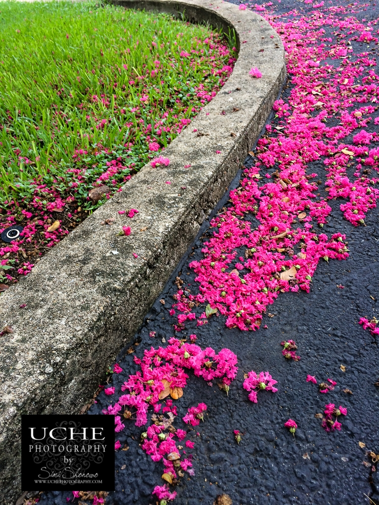 20160907.251.mobile365.pink green sweep
