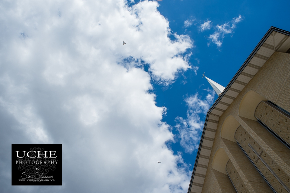 20150313.072.365.crosses, clouds, and birds.jpg