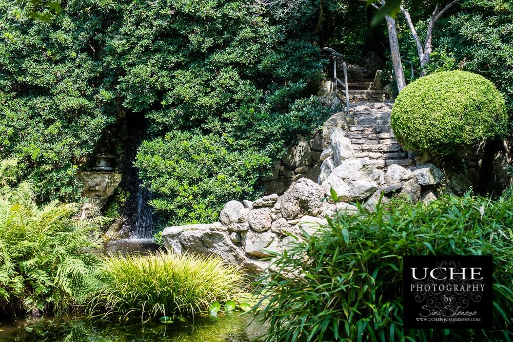 20150722.203.365.japanese garden view