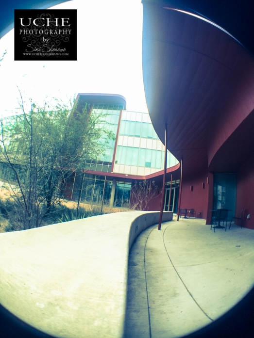 20150221.building curve fisheye shot.jpg