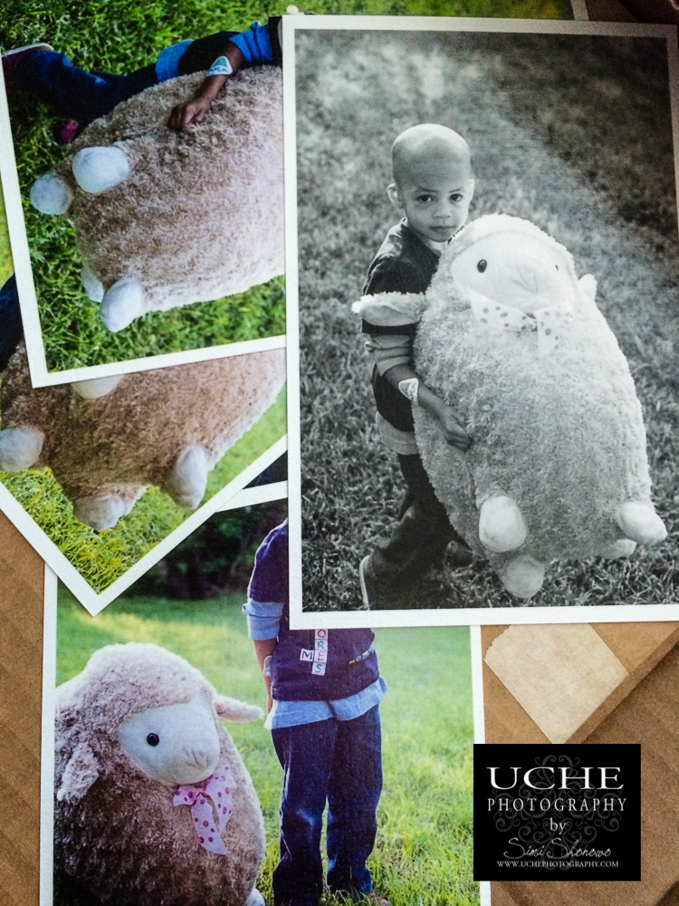 20160328.088.mobile365.boy and sheep print arrivals