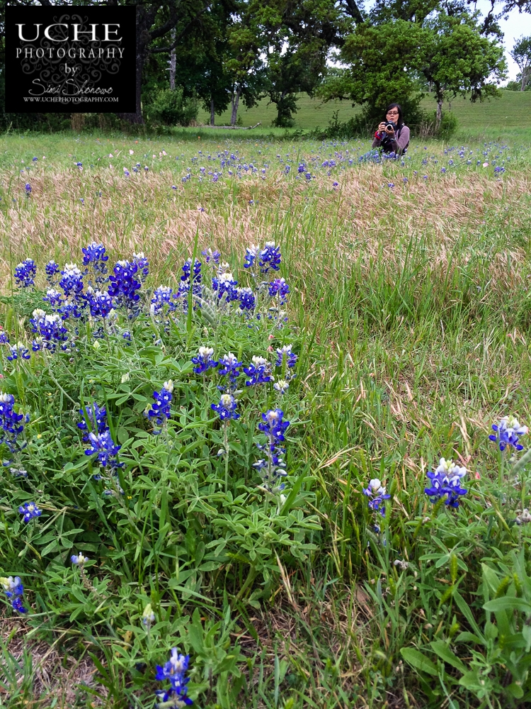 20160410.101.mobile365.in the wildflowers