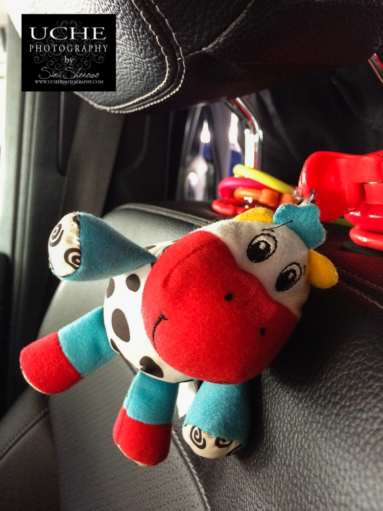20160611.163.mobile365.car cow