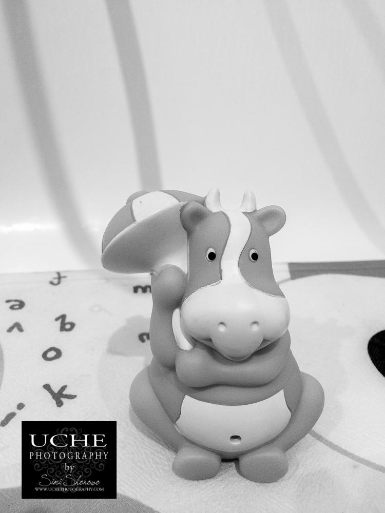 20160612.164.mobile365.baby hippo-beach mode