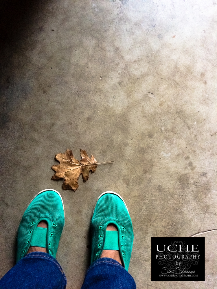 20161126.331.mobile365.leaf at green shoes