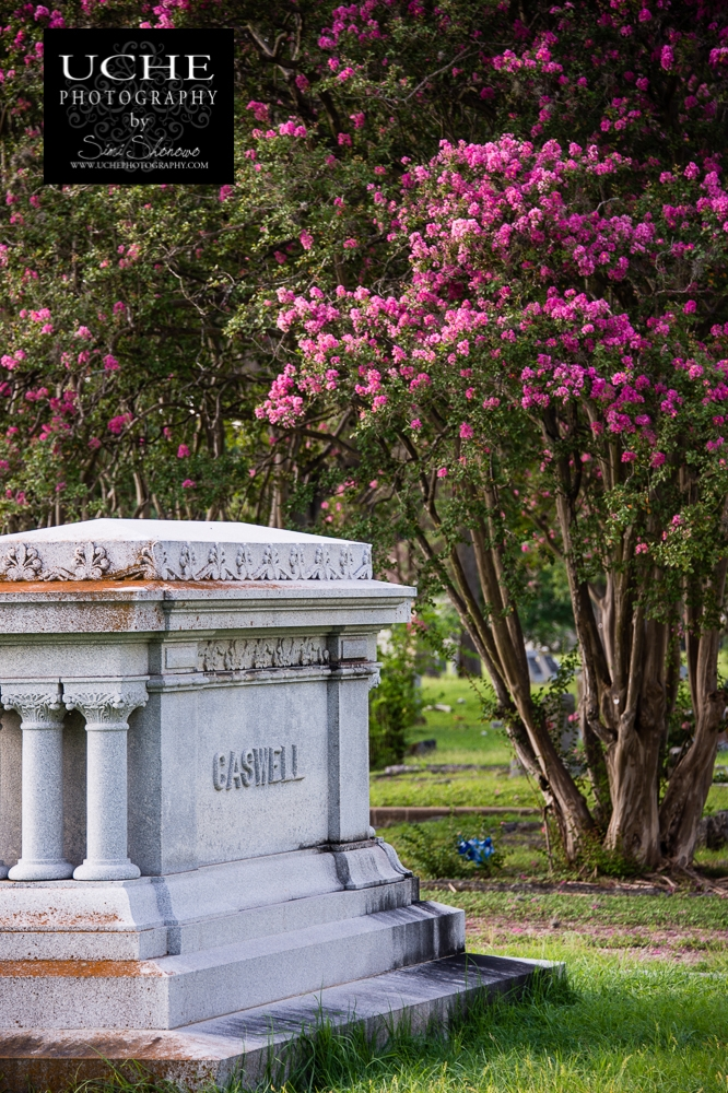 20150711.192.365.caswell in pink