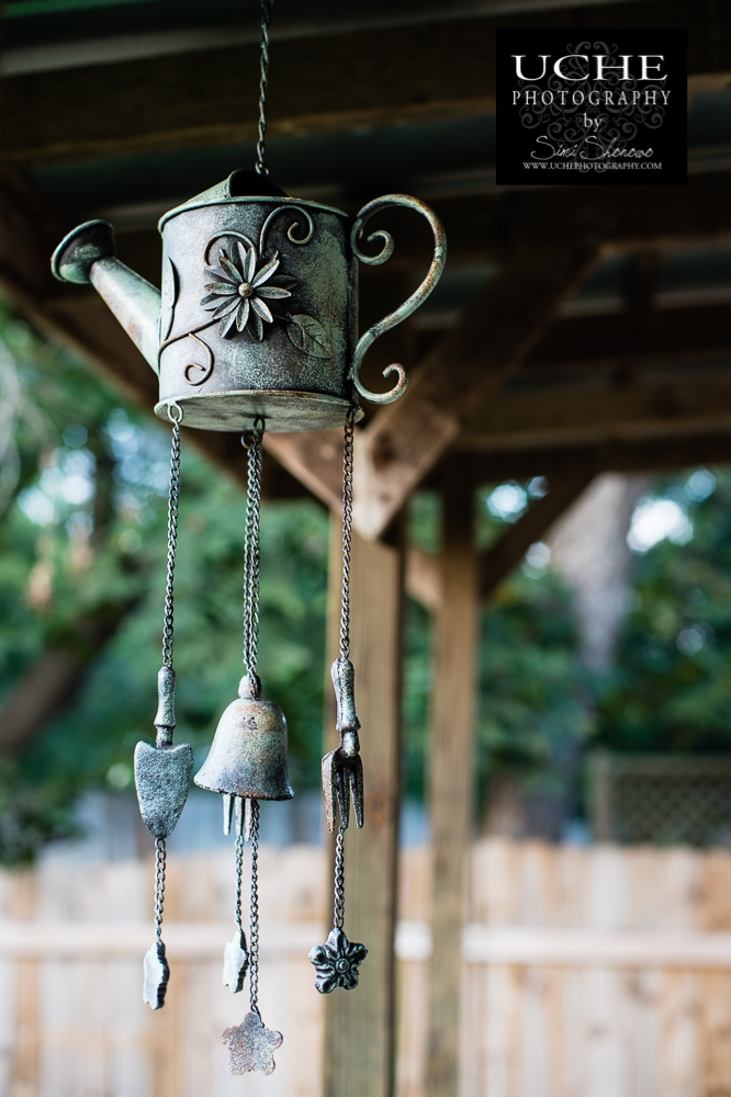 20150928.271.365.watering chimes