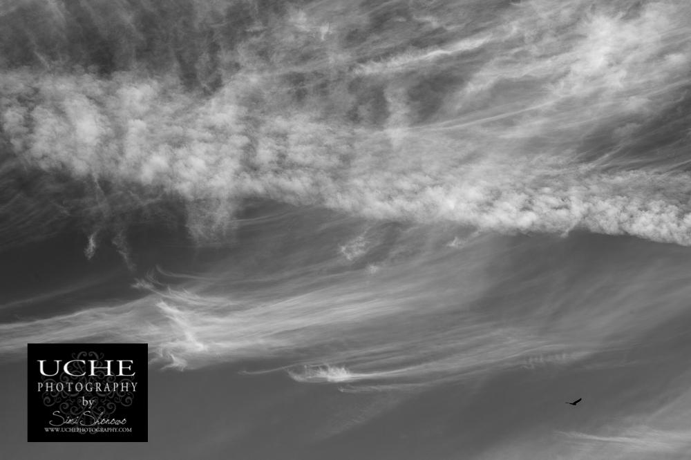 20151020.293.365.cloud trails soaring