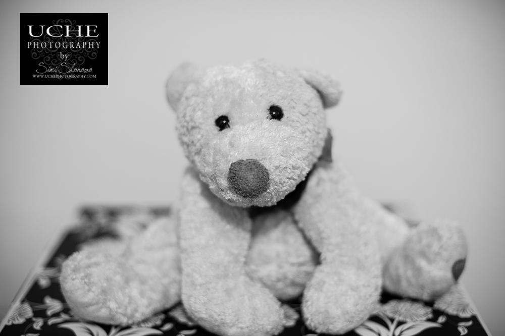 20151121.325.365.teddy
