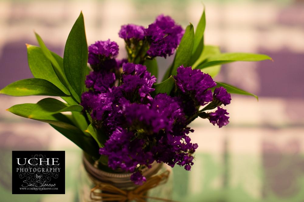 20150228.059.365.purple green.jpg