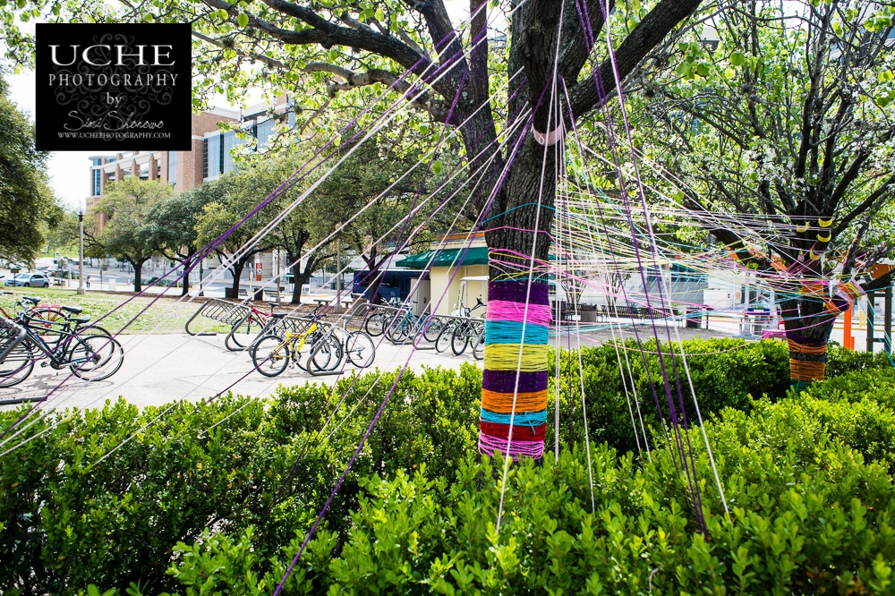 20150315.074.365.how to tie down a tree.jpg