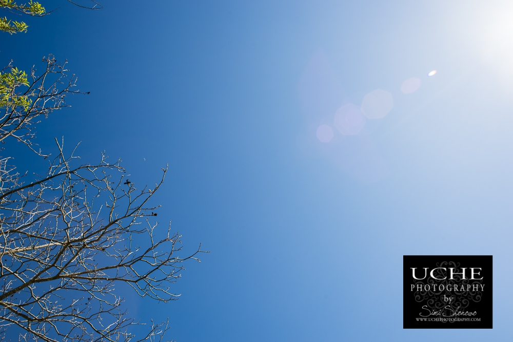 20150324.083.365.blue to sun.jpg