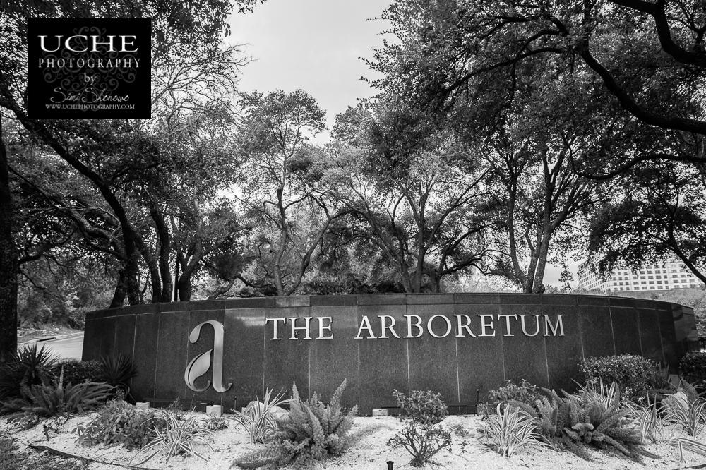 20160109.009.365.the arboretum
