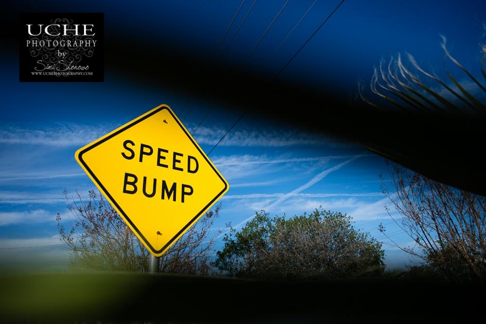 20160110.010.365.speed bump