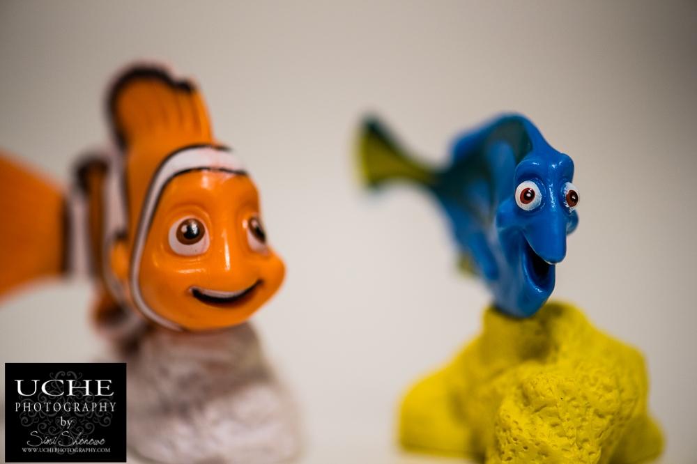 20160222.053.365.orange fish blue fish