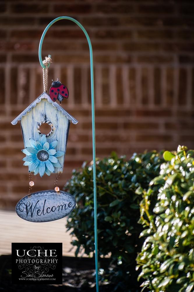 20160227.058.365.ladybug welcome home