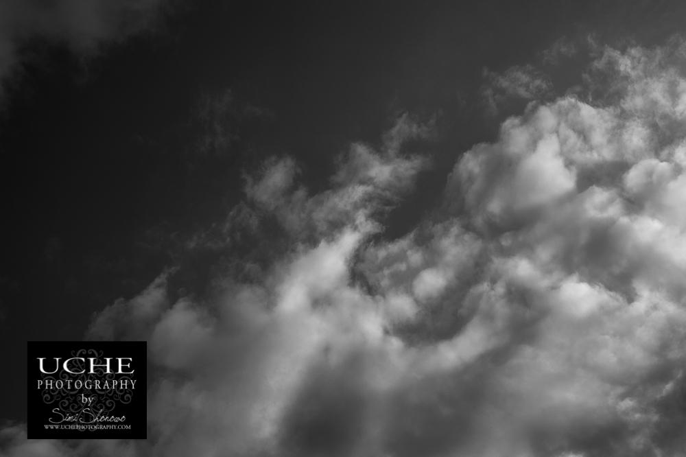 20160306.066.365.sky cotton