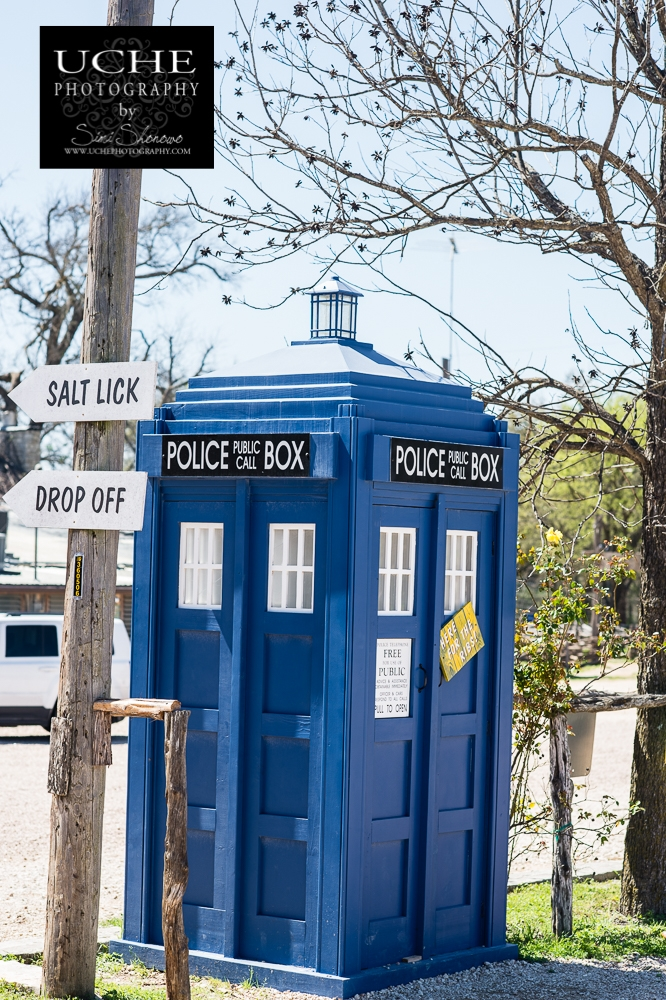 20160314.074.365.tardis at the salt lick